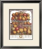 Twelve Months of Fruits, 1732, December Prints by Robert Furber