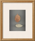 Assemblage No. 78 Prints by John Watson