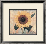 Sunflower Prints by John Faulkner
