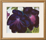 Black and Purple Petunia, 1925 Print by Georgia O'Keeffe