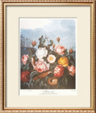 Group of Roses Posters by Dr. Robert J. Thornton