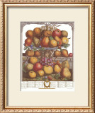 Twelve Months of Fruits, 1732, December Posters by Robert Furber