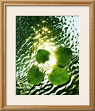 Floating Light Print by Leonard Morris