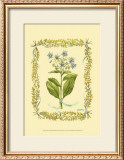 Borage Art by Wendy Russell