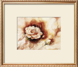 Rose Shadow II Prints by Karin Valk