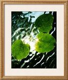 Floating Star Posters by Leonard Morris