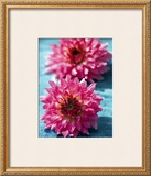 Dahlias Posters by Laurence Mouton
