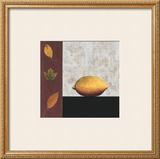 Lemon and Leaves Prints by John Boyd