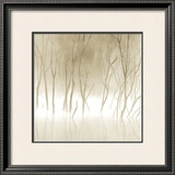 Soft Light II Print by Adam Brock