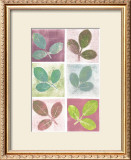 Leaf Impressions Prints by Eileen Crowell