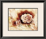 Rose Shadow I Prints by Karin Valk