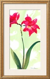 Asian Lily Art by Martha Collins