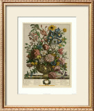 June Prints by Robert Furber
