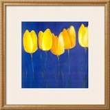 Yellow Tulips Poster by Teo Malinverni