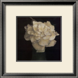 Gardenia in Green Vase Print by Carnochan