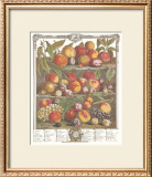 Twelve Months of Fruits, 1732, August Print by Robert Furber