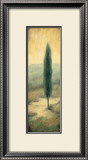 Tuscan Twilight II Posters by Laurie Tavino