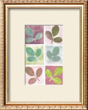 Leaf Impressions Posters by Eileen Crowell