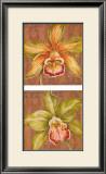Aloha Beauty Petites Art by Judy Shelby
