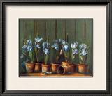 Iris Bleus Art by Fabrice De Villeneuve