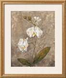 White Harmony II Prints by Trevor Copenhaver
