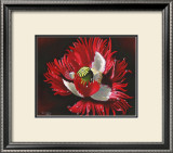 Red Poppy After Rain Art by Sue Warner