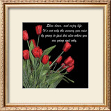 Night Time Tulips Poster by Anne Courtland