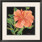 Orange Flower Prints by Margaret Magee