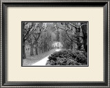 Garden Walk Prints by Laura Denardo