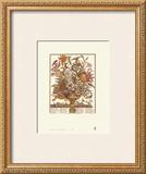 Twelve Months of Flowers, 1730, September Posters by Robert Furber