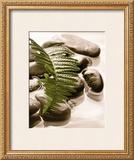 Spring Retreat I Prints by Christine Elizabeth