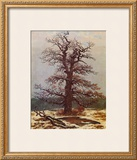 Oak in the Snow Framed Giclee Print by Caspar David Friedrich