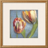 Parrot Tulips I Prints by Sally Wetherby