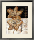 Blooming Orchid I Posters by John Stevenson