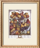 Twelve Months of Fruits, 1732, November Art by Robert Furber