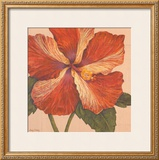 Island Hibiscus I Posters by Judy Shelby