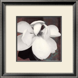 Magnolia Blue II Prints by Katrina Craven