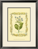 Borage Posters by Wendy Russell