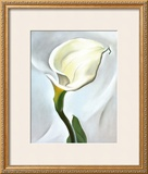 Calla Lily Turned Away, 1923 Print by Georgia O'Keeffe
