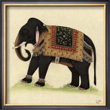 Elephant from India II Posters