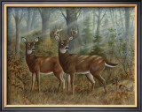 Deer Family II Art by Ron Jenkins