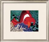Clown Fish Prints by Mark Mackay