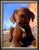 Lab Puppy Print by Robert Mcclintock