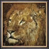 Lion Portrait Posters by Fabienne Arietti