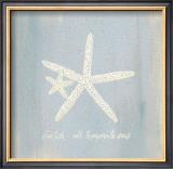 Imperial Starfish Prints