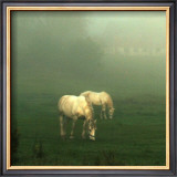 White Horses Field I Print by Rick Schimidt