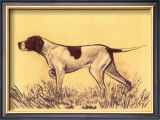 Hunting Dogs, Pointer Prints by Andres Collot