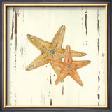 Starfish I Poster by Grace Pullen