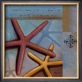 Sanibel Starfish Prints by Paul Brent