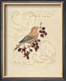 Filigree Songbird Posters by Chad Barrett